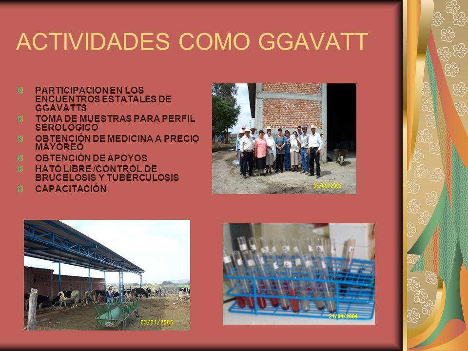 ACTIVIDADES COMO GGAVATT PARTICIPACION EN LOS ENCUENTROS ESTATALES DE GGAVATTS TOMA DE MUESTRAS PARA PERFIL SEROLÓGICO OBTENCIÓN DE MEDICINA A PRECIO