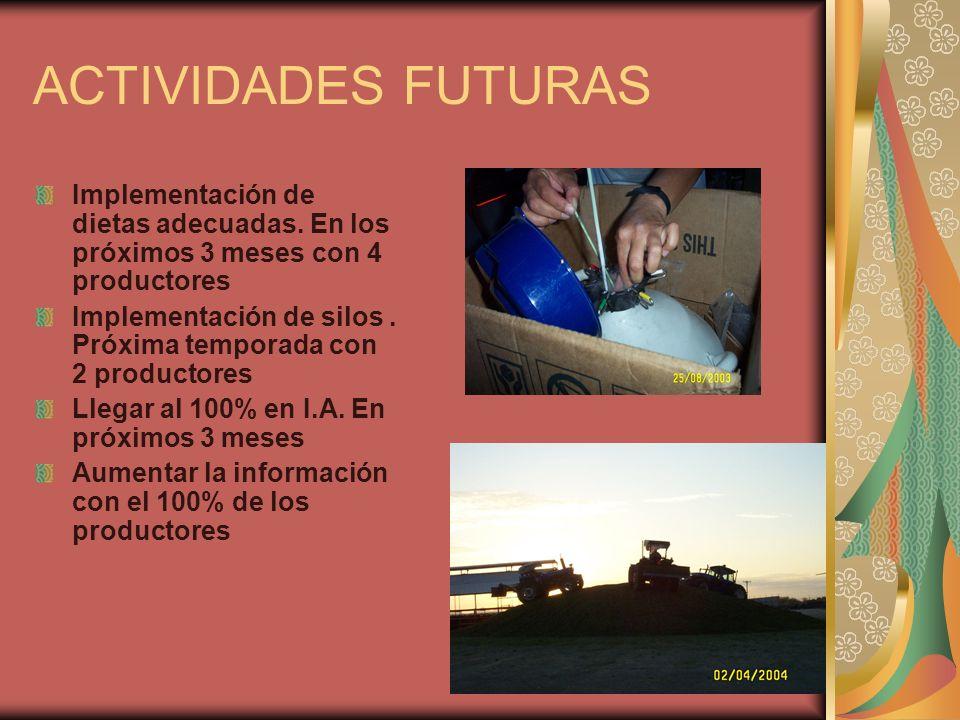 ACTIVIDADES FUTURAS Implementación de dietas adecuadas. En los próximos 3 meses con 4 productores Implementación de silos. Próxima temporada con 2 pro