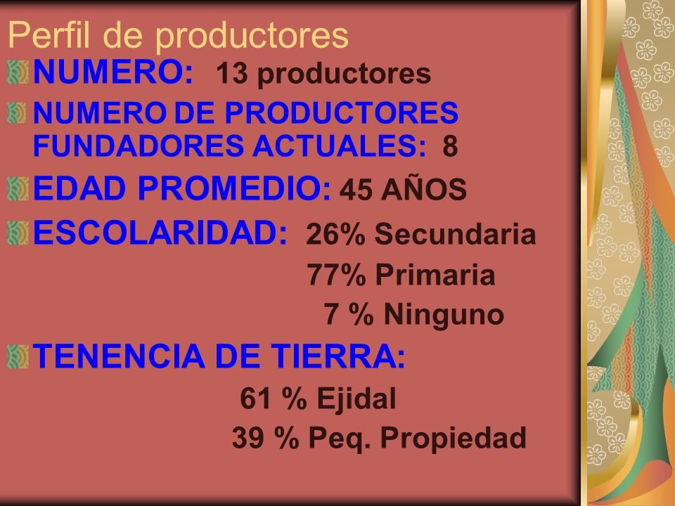 Perfil de productores NUMERO: 13 productores NUMERO DE PRODUCTORES FUNDADORES ACTUALES: 8 EDAD PROMEDIO: 45 AÑOS ESCOLARIDAD: 26% Secundaria 77% Prima