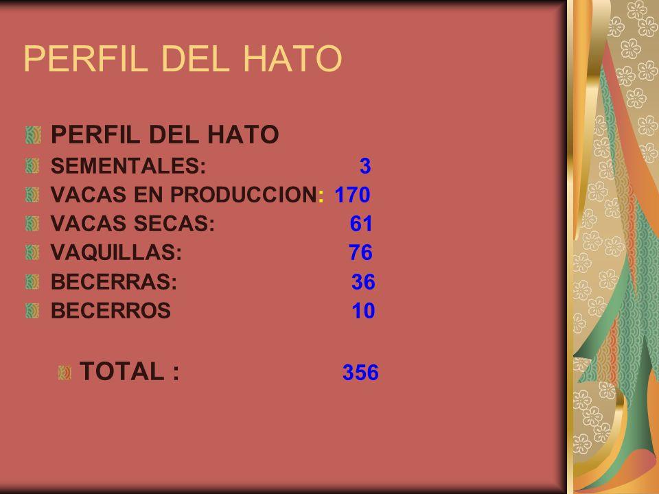 PERFIL DEL HATO SEMENTALES: 3 VACAS EN PRODUCCION: 170 VACAS SECAS: 61 VAQUILLAS: 76 BECERRAS: 36 BECERROS 10 TOTAL : 356