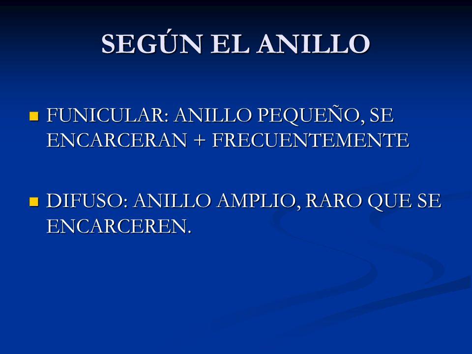OTROS TIPOS DE HERNIAS ONFALOCELE: DEFECTO CONGENITO ONFALOCELE: DEFECTO CONGENITO H.
