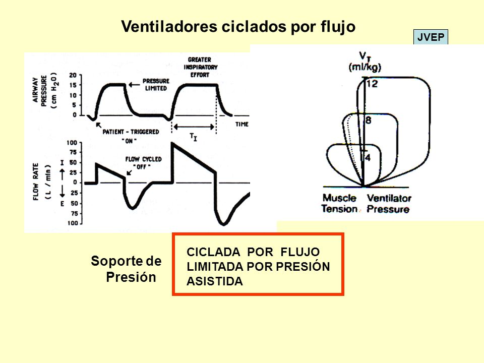 JVEP Ventiladores ciclados por flujo CICLADA POR FLUJO LIMITADA POR PRESIÓN ASISTIDA Soporte de Presión