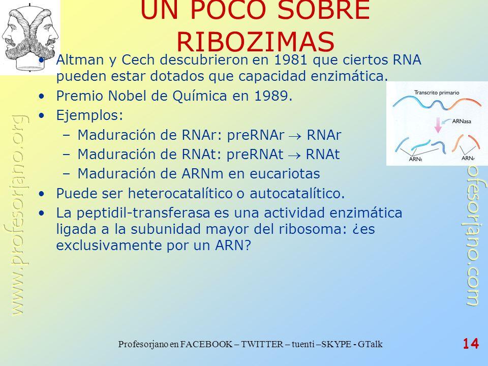 Profesorjano en FACEBOOK – TWITTER – tuenti –SKYPE - GTalk 14 UN POCO SOBRE RIBOZIMAS Altman y Cech descubrieron en 1981 que ciertos RNA pueden estar
