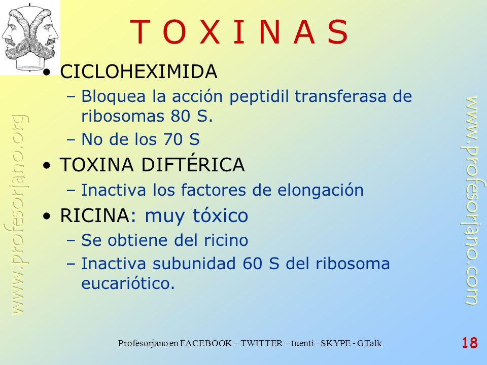 Profesorjano en FACEBOOK – TWITTER – tuenti –SKYPE - GTalk 18 T O X I N A S CICLOHEXIMIDA –Bloquea la acción peptidil transferasa de ribosomas 80 S. –