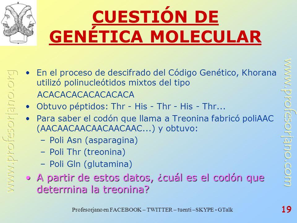 Profesorjano en FACEBOOK – TWITTER – tuenti –SKYPE - GTalk 19 CUESTIÓN DE GENÉTICA MOLECULAR En el proceso de descifrado del Código Genético, Khorana