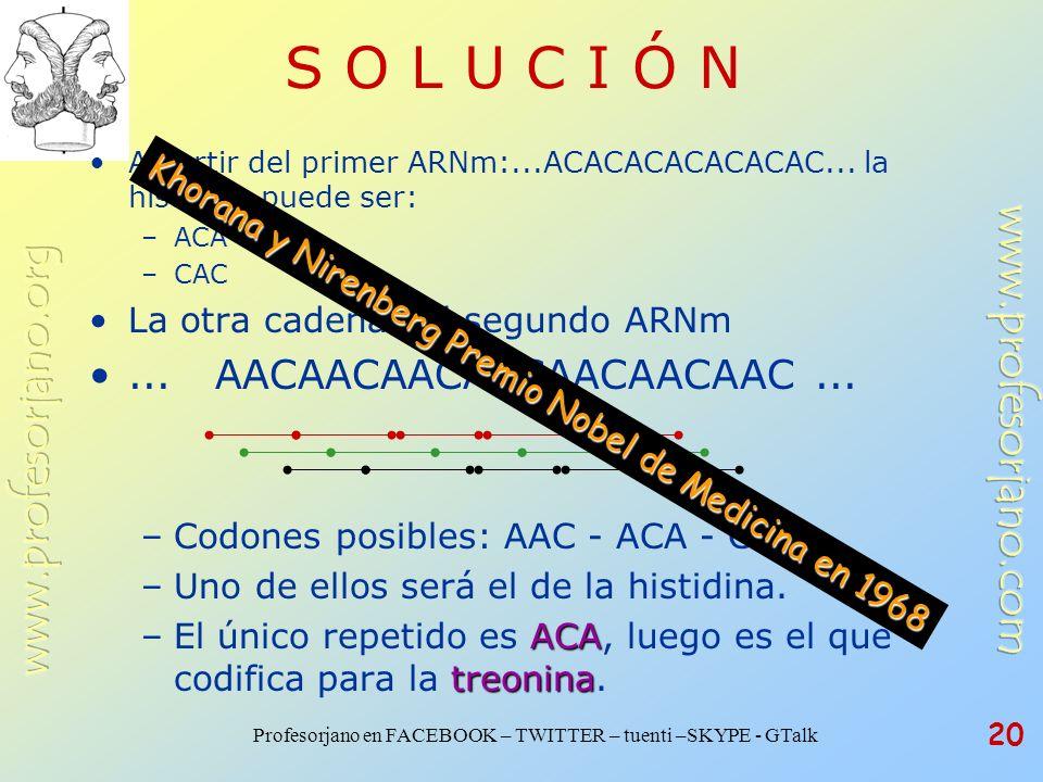 Profesorjano en FACEBOOK – TWITTER – tuenti –SKYPE - GTalk 20 S O L U C I Ó N A partir del primer ARNm:...ACACACACACACAC... la histidina puede ser: –A