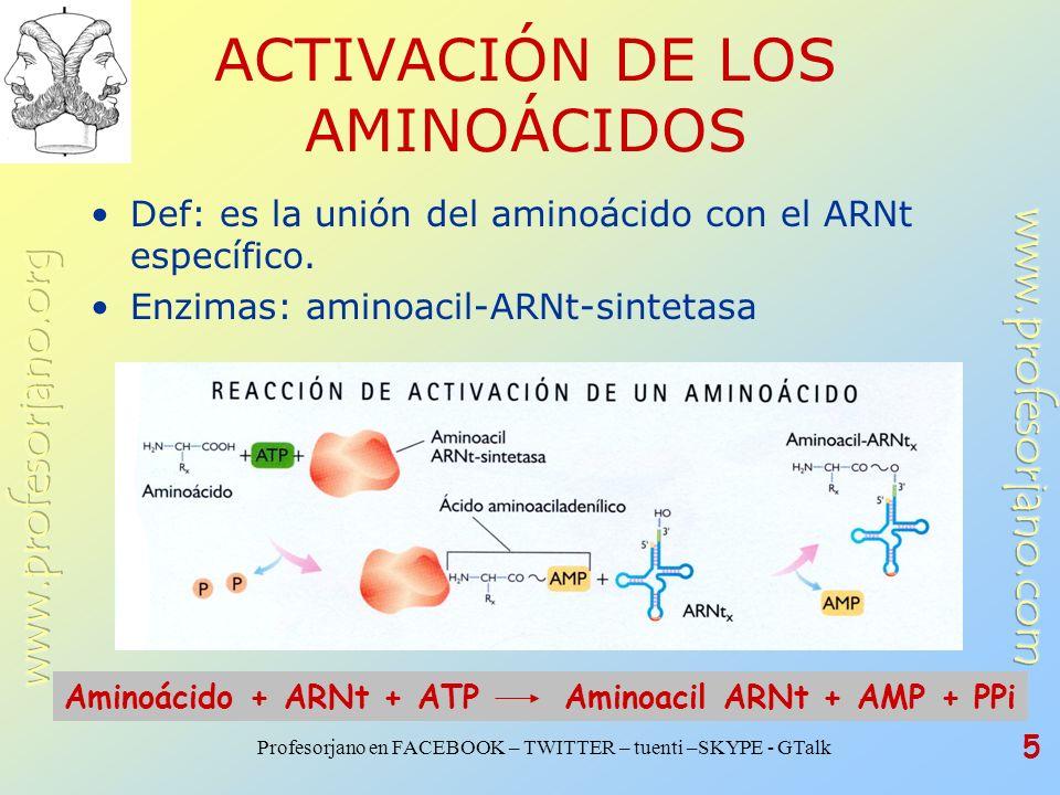 Profesorjano en FACEBOOK – TWITTER – tuenti –SKYPE - GTalk 5 ACTIVACIÓN DE LOS AMINOÁCIDOS Def: es la unión del aminoácido con el ARNt específico. Enz
