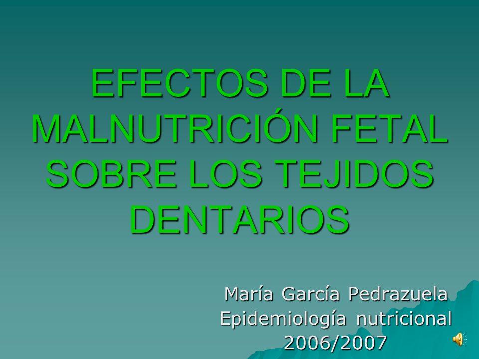 EFECTOS DE LA MALNUTRICIÓN FETAL SOBRE LOS TEJIDOS DENTARIOS María García Pedrazuela Epidemiología nutricional 2006/2007