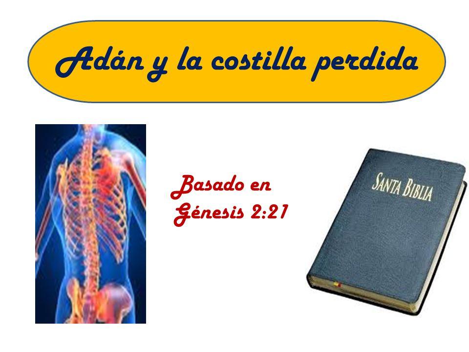 Adán y la costilla perdida Basado en Génesis 2:21