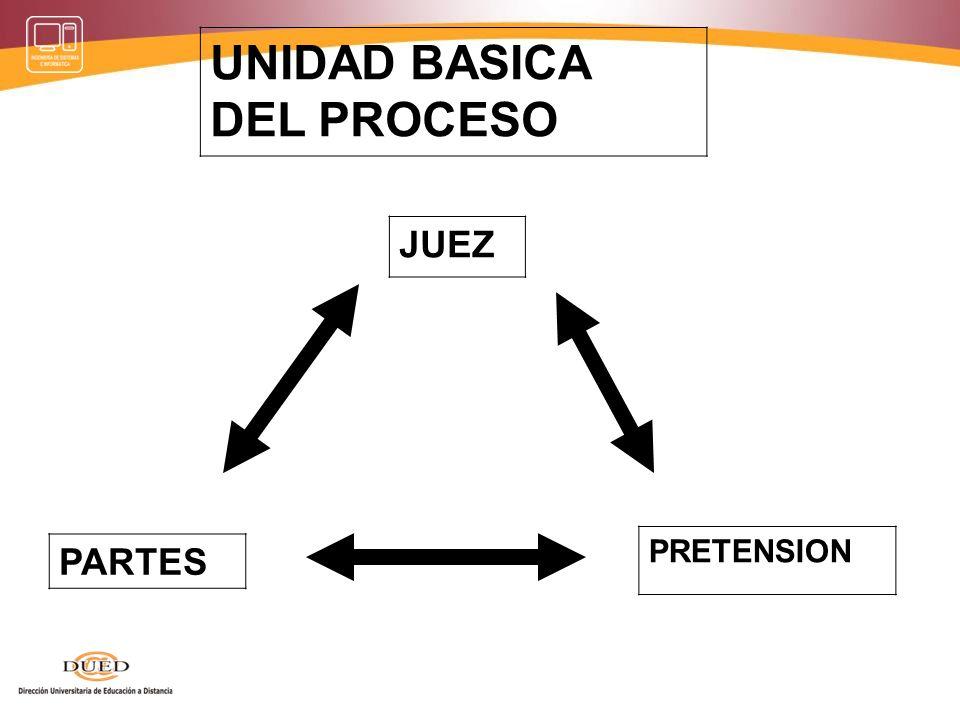 JUEZ UNIDAD BASICA DEL PROCESO PARTES PRETENSION