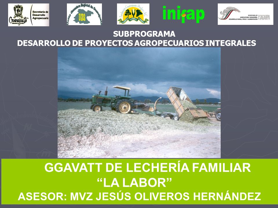 SUBPROGRAMA DESARROLLO DE PROYECTOS AGROPECUARIOS INTEGRALES GGAVATT DE LECHERÍA FAMILIAR LA LABOR ASESOR: MVZ JESÚS OLIVEROS HERNÁNDEZ