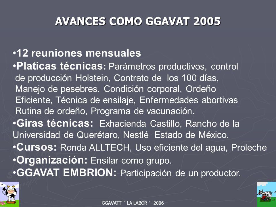 GGAVATT LA LABOR 2006 AVANCES COMO GGAVAT 2005 12 reuniones mensuales Platicas técnicas : Parámetros productivos, control de producción Holstein, Contrato de los 100 días, Manejo de pesebres.