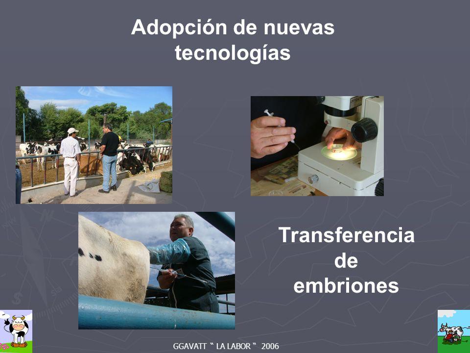 Adopción de nuevas tecnologías Transferencia de embriones