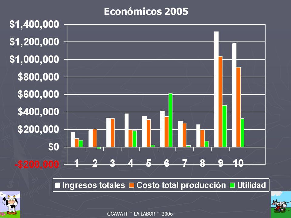GGAVATT LA LABOR 2006 Económicos 2005