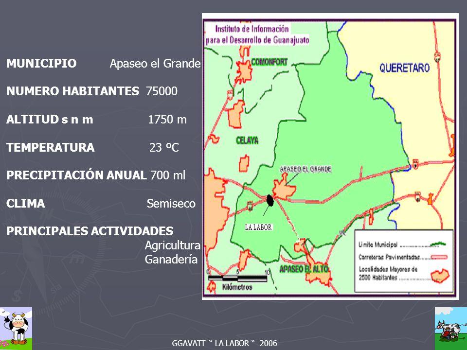 GGAVATT LA LABOR 2006 MUNICIPIO Apaseo el Grande NUMERO HABITANTES 75000 ALTITUD s n m 1750 m TEMPERATURA 23 ºC PRECIPITACIÓN ANUAL 700 ml CLIMA Semiseco PRINCIPALES ACTIVIDADES Agricultura Ganadería