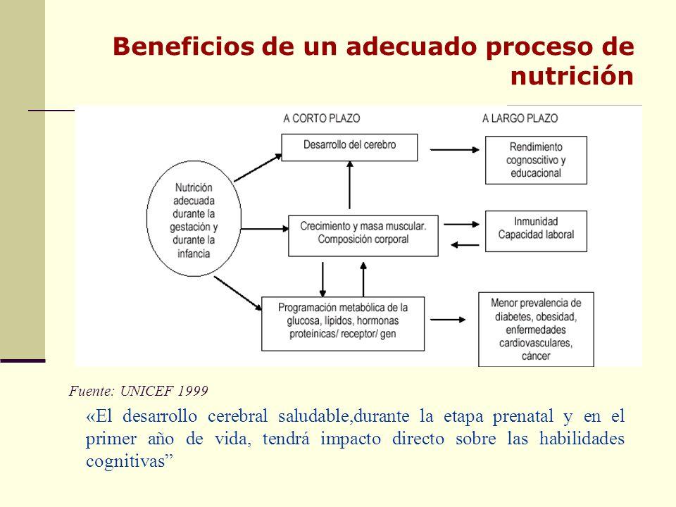Beneficios de un adecuado proceso de nutrición Fuente: UNICEF 1999 «El desarrollo cerebral saludable,durante la etapa prenatal y en el primer año de vida, tendrá impacto directo sobre las habilidades cognitivas