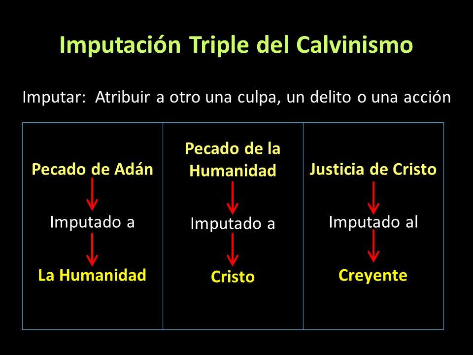 Imputación Triple del Calvinismo Imputar: Atribuir a otro una culpa, un delito o una acción. Pecado de Adán Imputado a La Humanidad. Pecado de la Huma