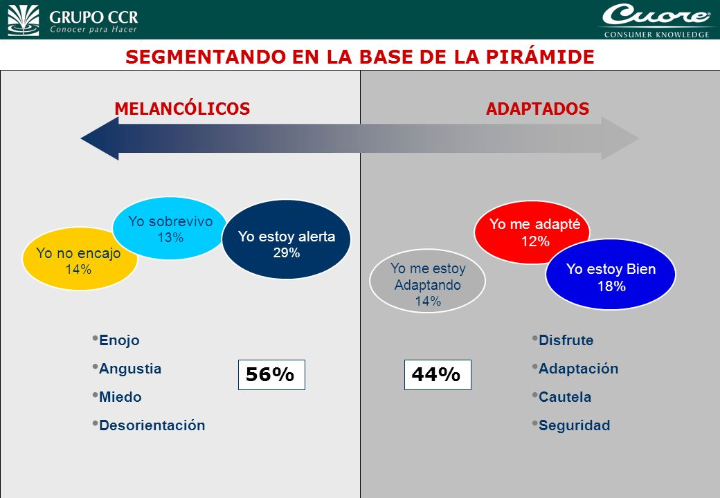 38 56% Enojo Angustia Miedo Desorientación 44% Disfrute Adaptación Cautela Seguridad SEGMENTANDO EN LA BASE DE LA PIRÁMIDE Yo no encajo 14% Yo sobrevi
