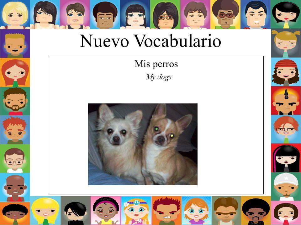 Nuevo Vocabulario Mis perros My dogs