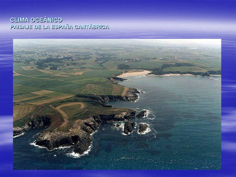CLIMA OCEÁNICO PAISAJE DE LA ESPAÑA CANTÁBRICA