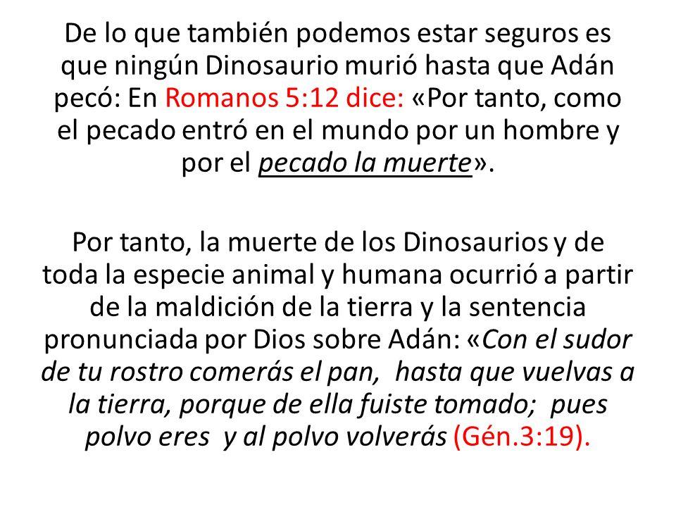 De lo que también podemos estar seguros es que ningún Dinosaurio murió hasta que Adán pecó: En Romanos 5:12 dice: «Por tanto, como el pecado entró en