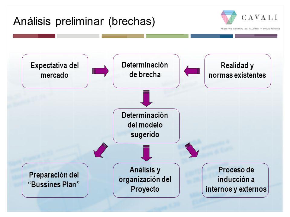 Análisis preliminar (brechas) Determinación de brecha Expectativa del mercado Realidad y normas existentes Determinación del modelo sugerido Análisis