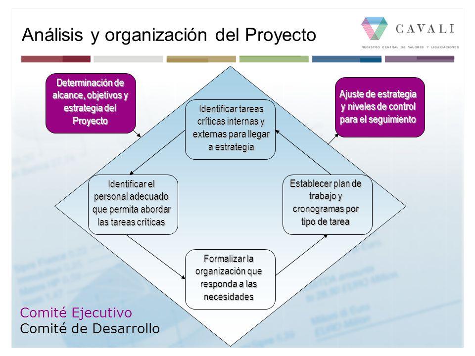 Determinación de alcance, objetivos y estrategia del Proyecto Identificar tareas críticas internas y externas para llegar a estrategia Identificar el