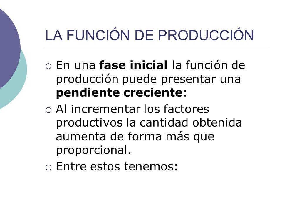 LA FUNCIÓN DE PRODUCCIÓN En una fase inicial la función de producción puede presentar una pendiente creciente: Al incrementar los factores productivos