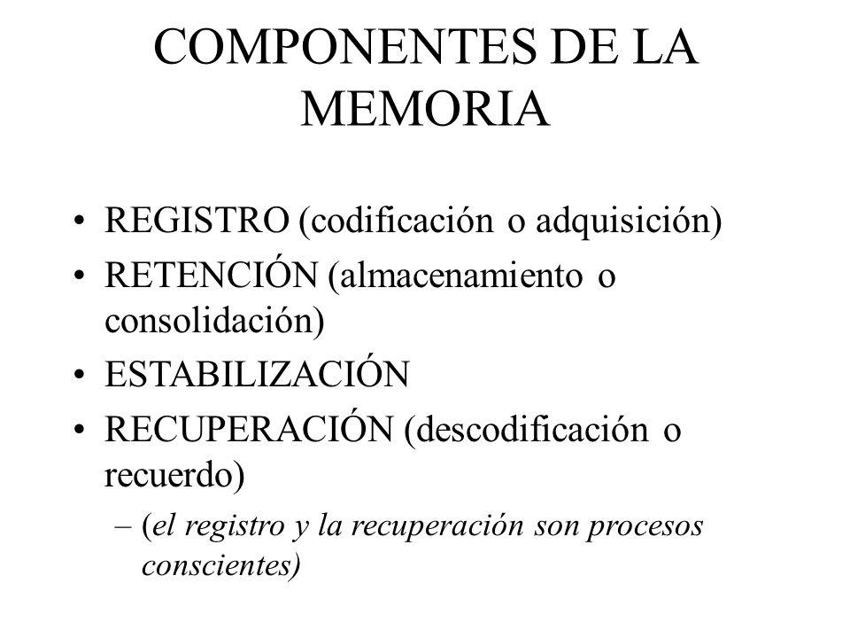 COMPONENTES DE LA MEMORIA REGISTRO (codificación o adquisición) RETENCIÓN (almacenamiento o consolidación) ESTABILIZACIÓN RECUPERACIÓN (descodificació