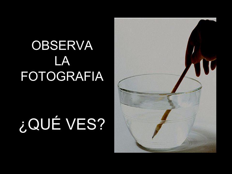 OBSERVA LA FOTOGRAFIA ¿QUÉ VES?
