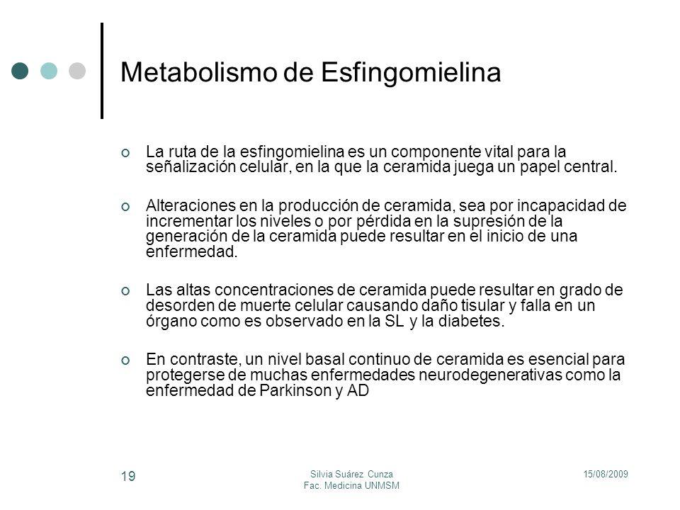15/08/2009Silvia Suárez Cunza Fac. Medicina UNMSM 19 Metabolismo de Esfingomielina La ruta de la esfingomielina es un componente vital para la señaliz