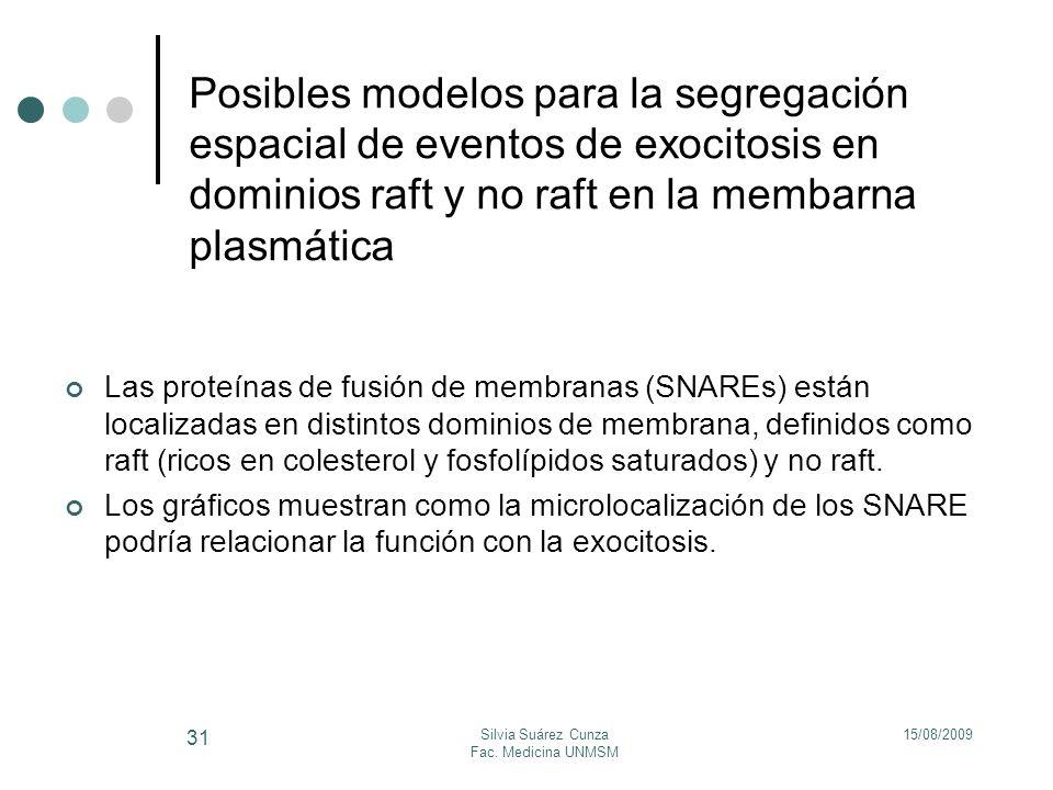 15/08/2009Silvia Suárez Cunza Fac. Medicina UNMSM 31 Posibles modelos para la segregación espacial de eventos de exocitosis en dominios raft y no raft