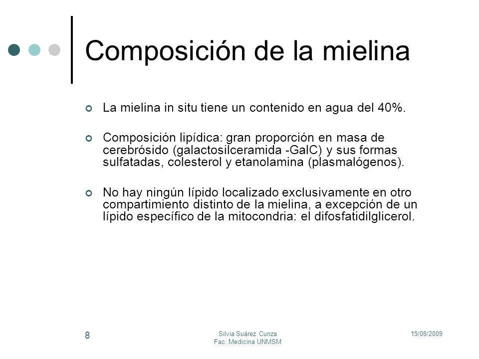 15/08/2009Silvia Suárez Cunza Fac. Medicina UNMSM 8 Composición de la mielina La mielina in situ tiene un contenido en agua del 40%. Composición lipíd