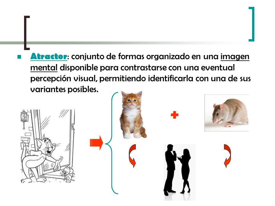 Atractor : conjunto de formas organizado en una imagen mental disponible para contrastarse con una eventual percepción visual, permitiendo identificar