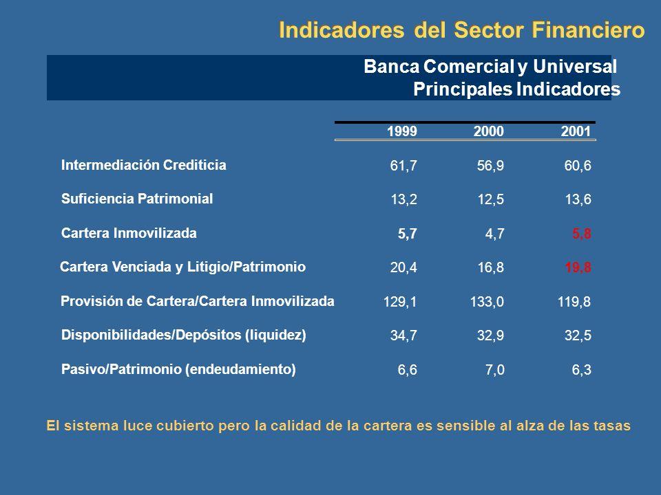 199920002001 Intermediación Crediticia 61,756,960,6 Suficiencia Patrimonial 13,212,513,6 Cartera Inmovilizada 5,74,75,8 Cartera Venciada y Litigio/Pat