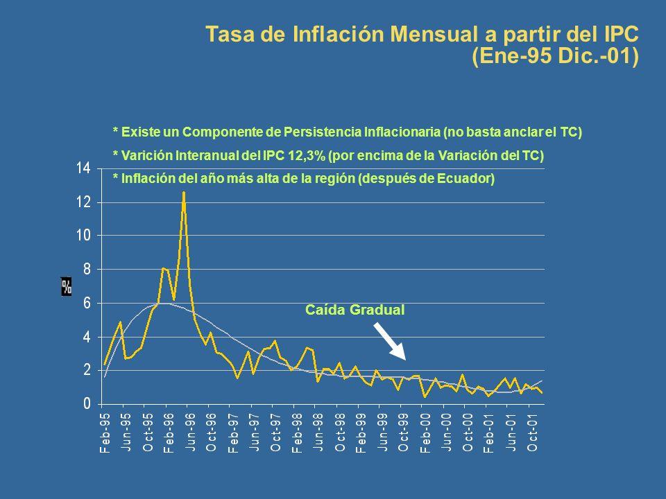 Tasa de Inflación Mensual a partir del IPC (Ene-95 Dic.-01) * Existe un Componente de Persistencia Inflacionaria (no basta anclar el TC) * Varición In