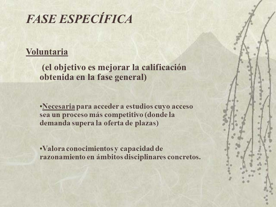 RAMAS DE CONOCIMIENTOMATERIAS VINCULADAS C.
