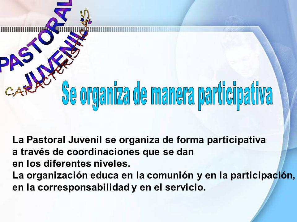 La Pastoral Juvenil se organiza de forma participativa a través de coordinaciones que se dan en los diferentes niveles. La organización educa en la co