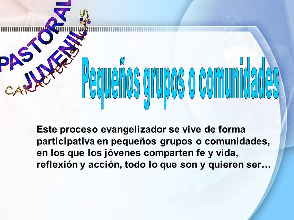 Este proceso evangelizador se vive de forma participativa en pequeños grupos o comunidades, en los que los jóvenes comparten fe y vida, reflexión y ac