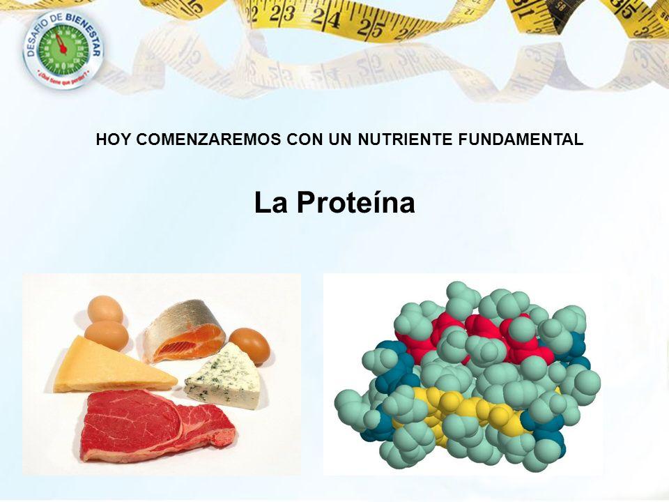 La Proteína HOY COMENZAREMOS CON UN NUTRIENTE FUNDAMENTAL