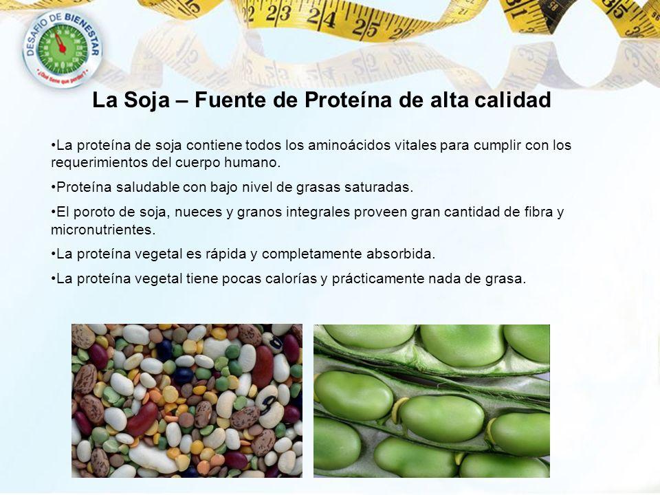 La proteína de soja contiene todos los aminoácidos vitales para cumplir con los requerimientos del cuerpo humano. Proteína saludable con bajo nivel de