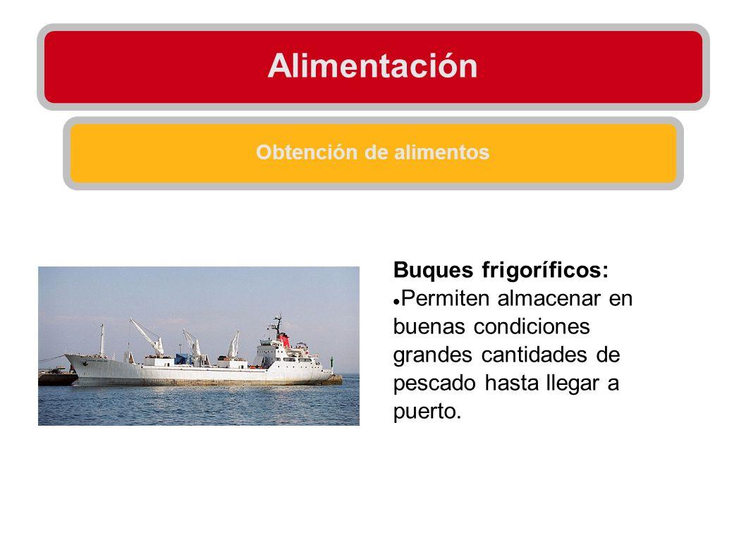 Alimentación Obtención de alimentos Buques frigoríficos: Permiten almacenar en buenas condiciones grandes cantidades de pescado hasta llegar a puerto.