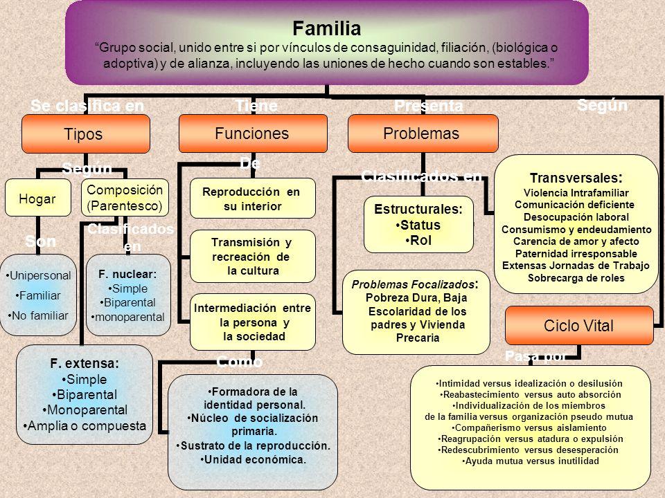 Desarrollo histórico de la Familia Familia Grupo social, unido entre si por vínculos de consaguinidad, filiación, (biológica o adoptiva) y de alianza, incluyendo las uniones de hecho cuando son estables.