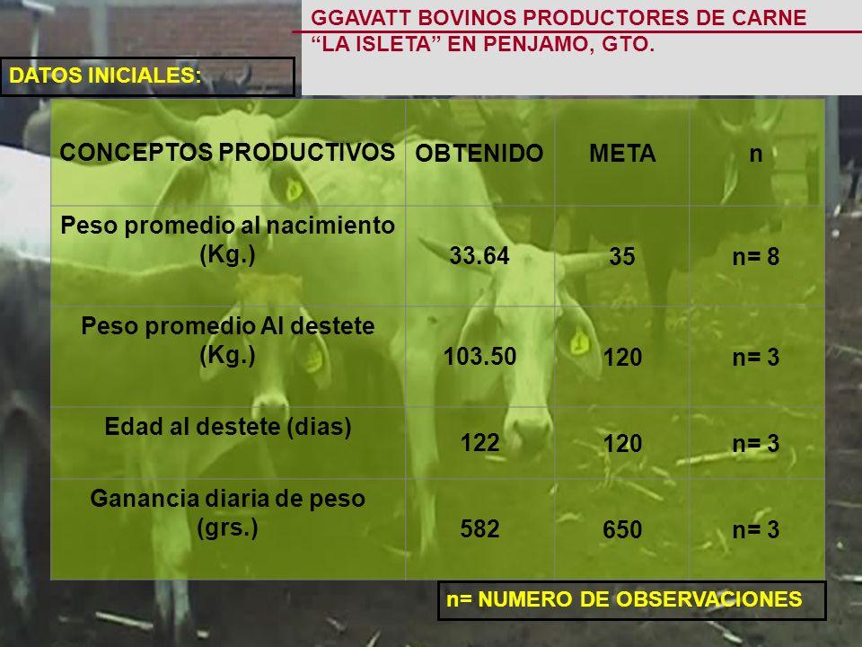 n= NUMERO DE OBSERVACIONES GGAVATT BOVINOS PRODUCTORES DE CARNE LA ISLETA EN PENJAMO, GTO.