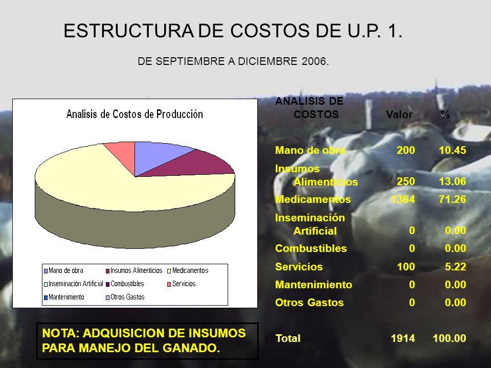ESTRUCTURA DE COSTOS DE U.P. 1. DE SEPTIEMBRE A DICIEMBRE 2006.