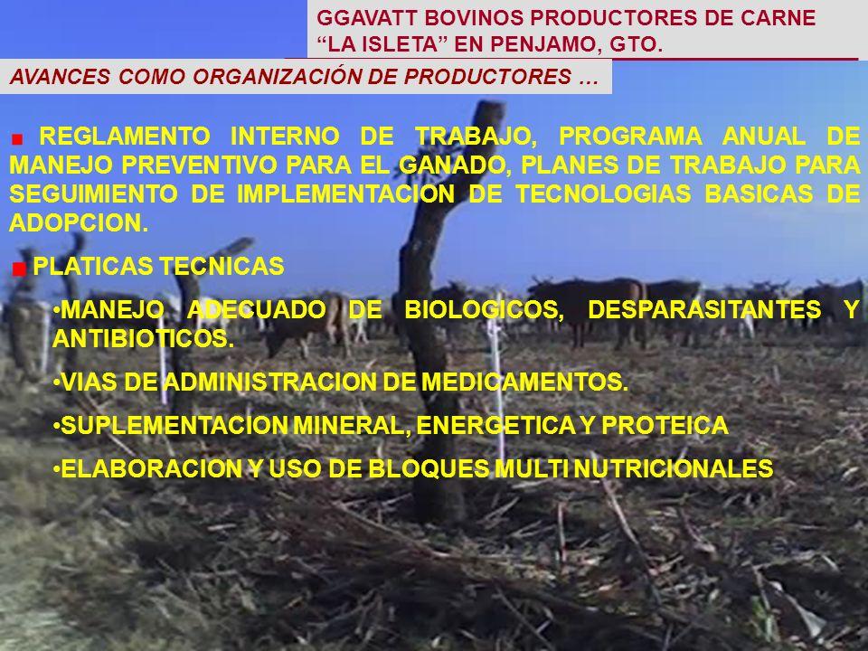 REGLAMENTO INTERNO DE TRABAJO, PROGRAMA ANUAL DE MANEJO PREVENTIVO PARA EL GANADO, PLANES DE TRABAJO PARA SEGUIMIENTO DE IMPLEMENTACION DE TECNOLOGIAS BASICAS DE ADOPCION.