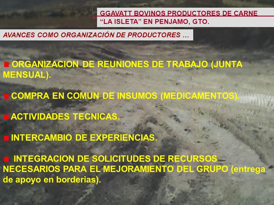 ORGANIZACION DE REUNIONES DE TRABAJO (JUNTA MENSUAL).