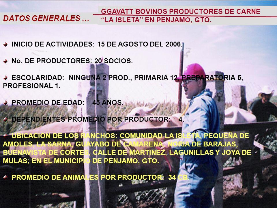 DATOS GENERALES … INICIO DE ACTIVIDADES: 15 DE AGOSTO DEL 2006.