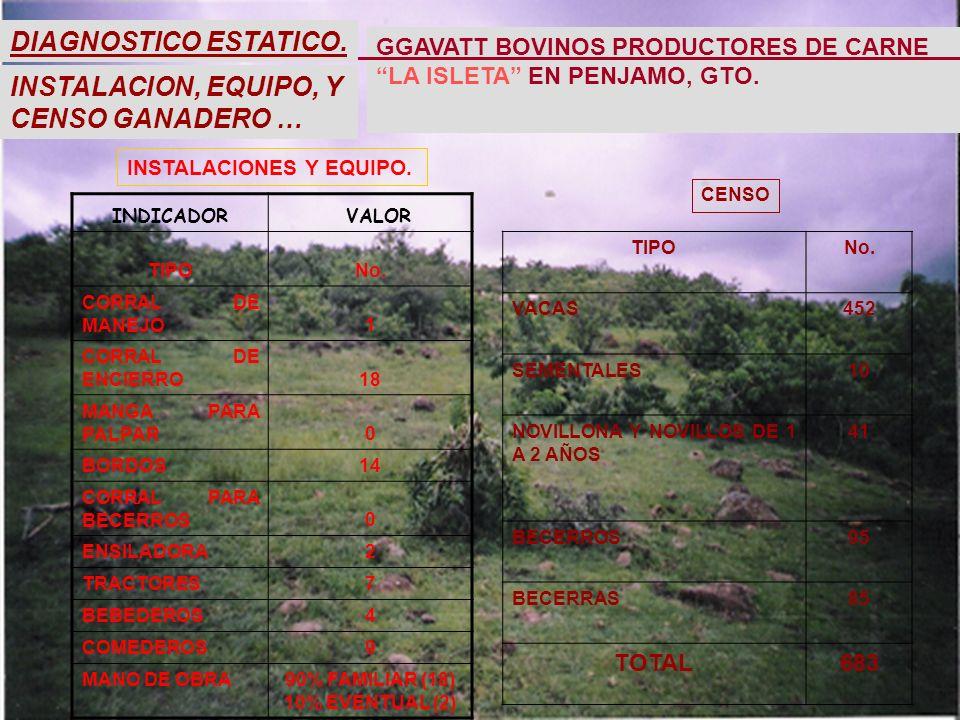 INSTALACION, EQUIPO, Y CENSO GANADERO … INDICADOR VALOR TIPONo.