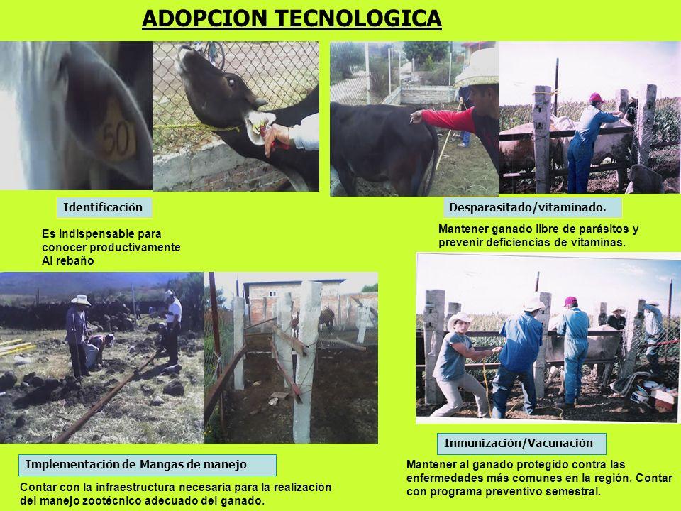 ADOPCION TECNOLOGICA Es indispensable para conocer productivamente Al rebaño Mantener ganado libre de parásitos y prevenir deficiencias de vitaminas.